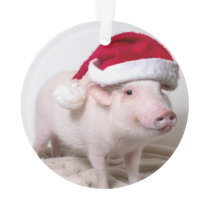 Pickle the Mini Pig Christmas Ornament