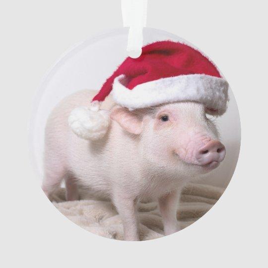 Christmas Pig.Pickle The Mini Pig Christmas Ornament