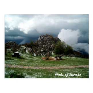 Picks of Europe Postcard