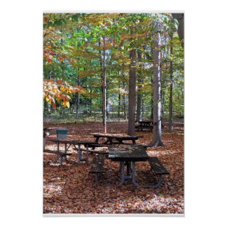 Picnic Bench during Fall Poster