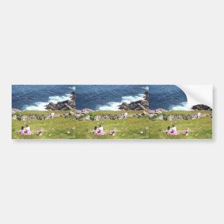 Picnic by the sea bumper sticker