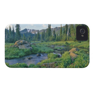 Picnic Creek in the Jewel Basin of the Swan iPhone 4 Covers
