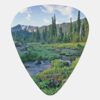 Picnic Creek in the Jewel Basin of the Swan Guitar Pick
