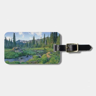 Picnic Creek in the Jewel Basin of the Swan Luggage Tag