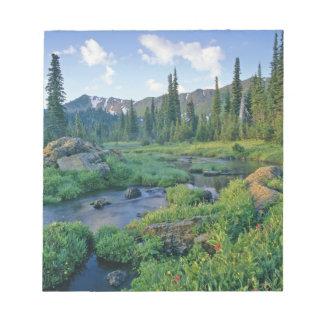 Picnic Creek in the Jewel Basin of the Swan Memo Pad