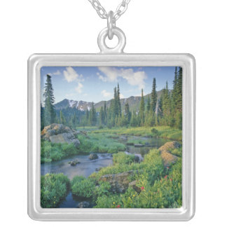 Picnic Creek in the Jewel Basin of the Swan Necklace