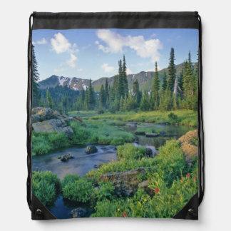 Picnic Creek in the Jewel Basin of the Swan Cinch Bags