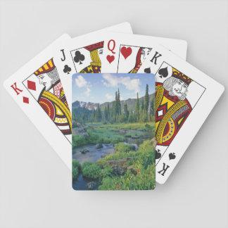 Picnic Creek in the Jewel Basin of the Swan Poker Deck