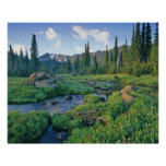 Picnic Creek in the Jewel Basin of the Swan Posters
