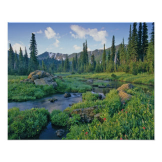 Picnic Creek in the Jewel Basin of the Swan Poster
