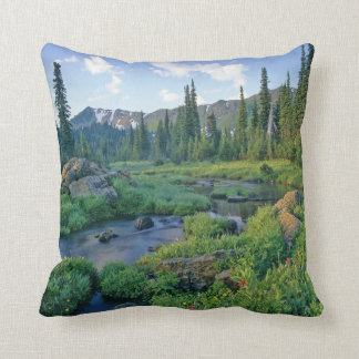 Picnic Creek in the Jewel Basin of the Swan Throw Pillow