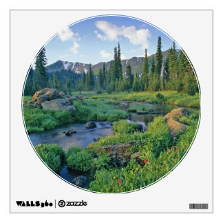 Picnic Creek in the Jewel Basin of the Swan Room Sticker
