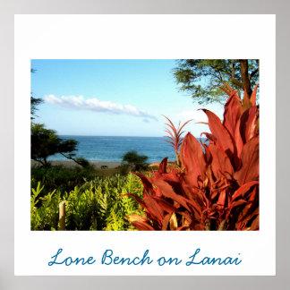 Picnic on Hawaii Poster