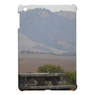 Picnic Table at San Simeon National Park, CA iPad Mini Case