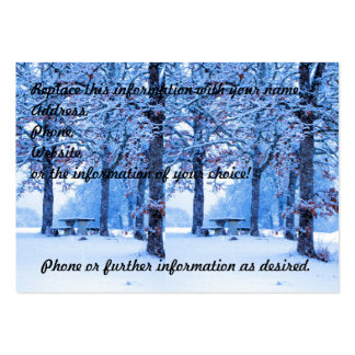 Picnic Table in Winter Large Business Cards (Pack Of 100)