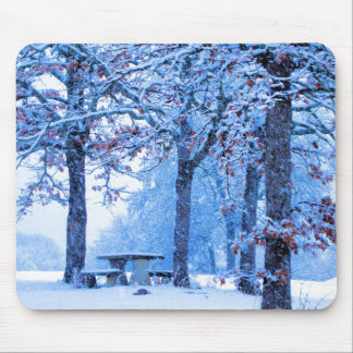 Picnic Table in Winter Mouse Pad