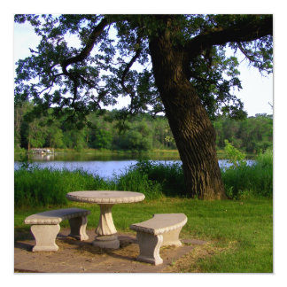 Picnic table under an old tree near the river mn card