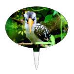 pico amarillo blanco negro del pájaro contra el ve figura de tarta