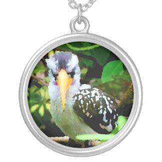 pico amarillo blanco negro del pájaro contra el ve colgante redondo