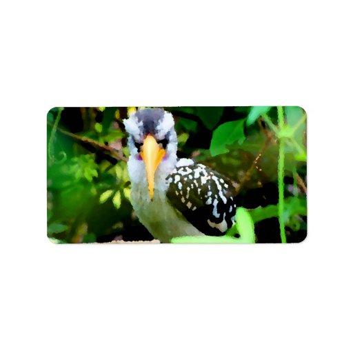 pico amarillo blanco negro del pájaro contra el ve etiqueta de dirección