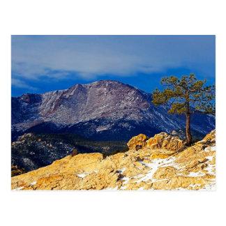 Pico de los lucios y árbol solitario postal