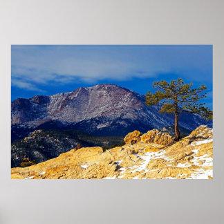 Pico de los lucios y árbol solitario póster