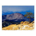 Pico de los lucios y árbol solitario tarjeta postal