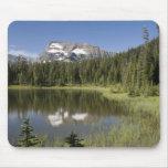 Pico de montaña reflejado en un lago tapete de ratón