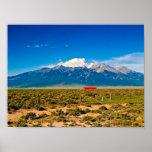 Pico de P6190115-Blanca Posters