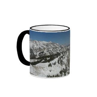 Picos nevados de la taza magnífica de las montañas