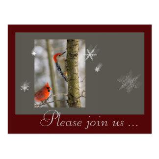 Picoteador de madera cardinal de los pájaros postales