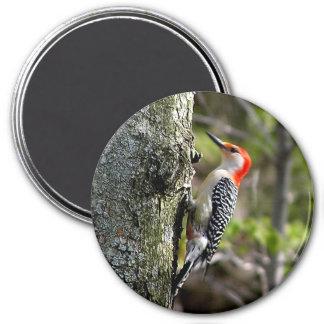 picoteador de madera - rojo hinchado imán redondo 7 cm