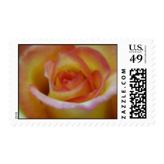 Picture 1059 postage stamp