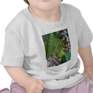 Picture 1241.jpg tshirts