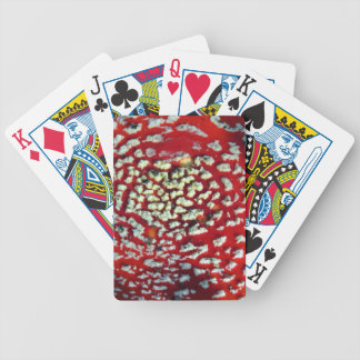 PICTURE 125 BICYCLE PLAYING CARDS