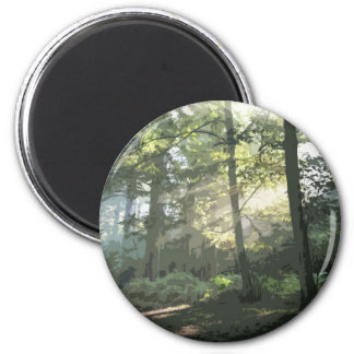PICTURE 133 MAGNET