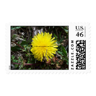 Picture 158 Live like you only have one planet Postage