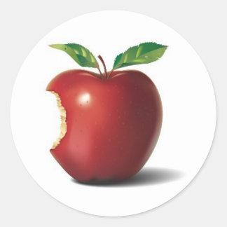Picture-6 Classic Round Sticker