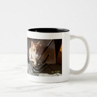 Picture CD 058 Two-Tone Coffee Mug