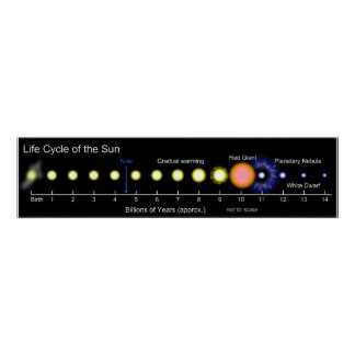 Picture Diagram of the Solar Life Cycle of the Sun Print