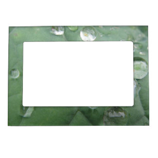 Picture frame water drop on green-grey sheet