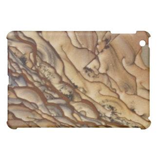 Picture Jasper iPad case