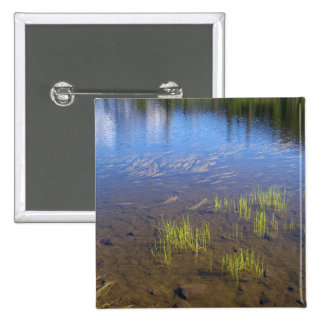 Picture Lake Grass Pin
