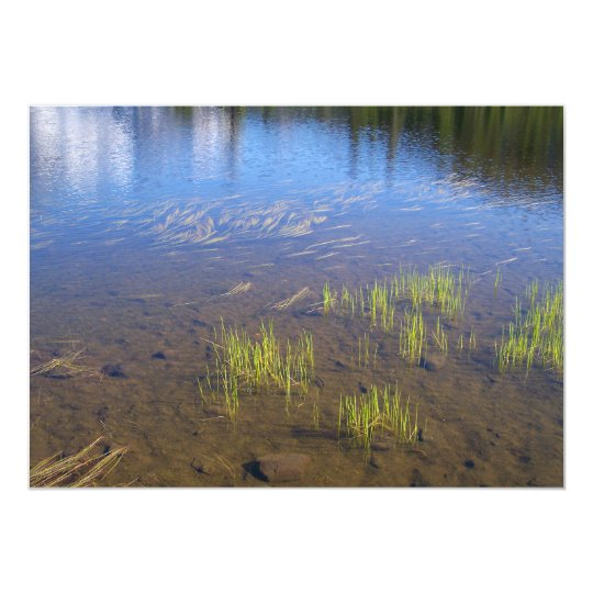 Picture Lake Grass Card