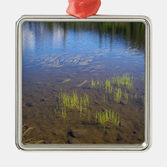 Picture Lake Grass Metal Ornament