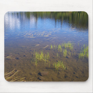 Picture Lake Grass Mouse Pad