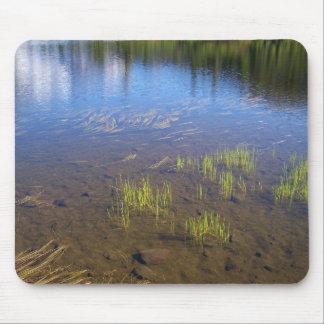Picture Lake Grass Mousepad