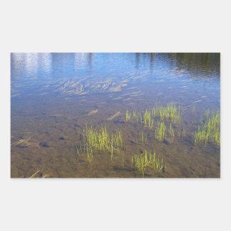 Picture Lake Grass Stickers