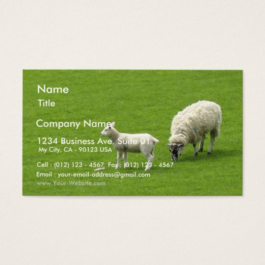 Picture Of A Baby Sheep With Her Mother Business Card
