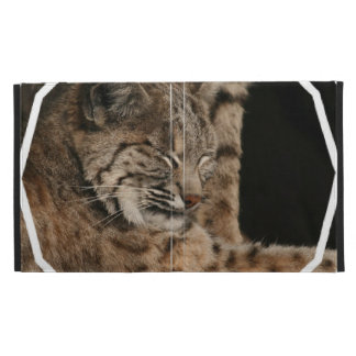 Picture of a Bobcat iPad Case